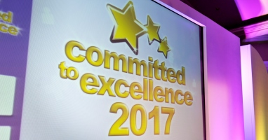 Committed to Excellence Winners 2017
