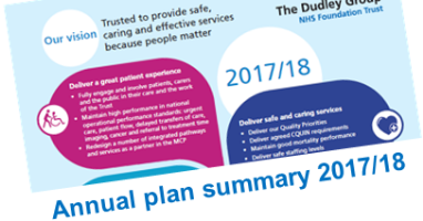 Annual plan summary 2017/18